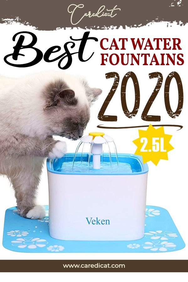 Best Cat Water Fountain 1